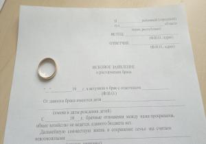 2 prichiny-razvoda-v-zajavlenii-o-rastorzhenii-braka